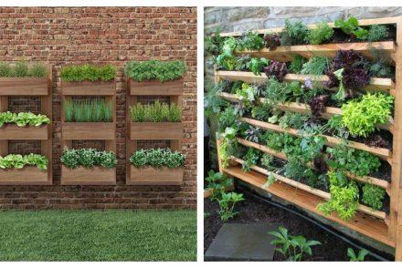 Jardim vertical: 6 ideias para criar o seu
